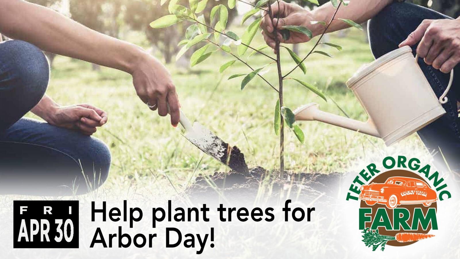 Arbor Day slide